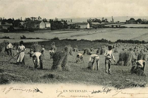 En Nivernais-La Moisson
