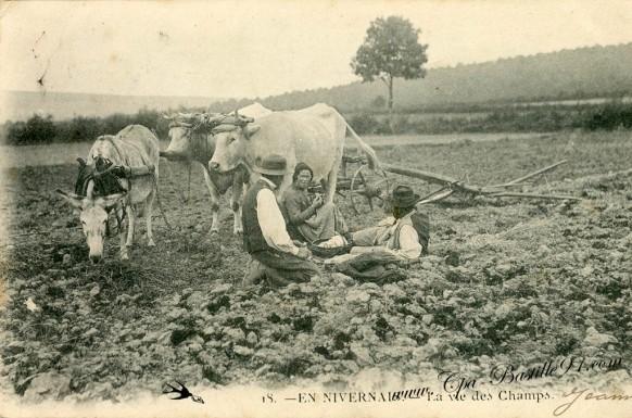 En Nivernais-La vie des Champs