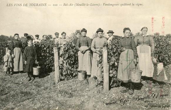 Les vins de Touraine-Bel-air-Neuillé - vendangeurs quittant la vigne