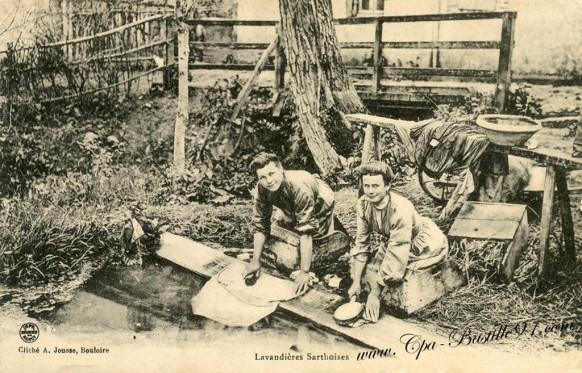 Lavandière Sarthoise-Cliché A-Jousse-Bouloire