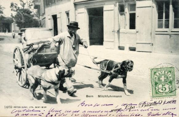 Carte postale ancienne-Bern-Milchuhrmann-le charretier de lait