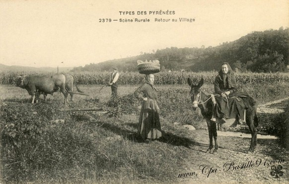 types-des-Pyrénées-scène-rurale-Retour-au-Village