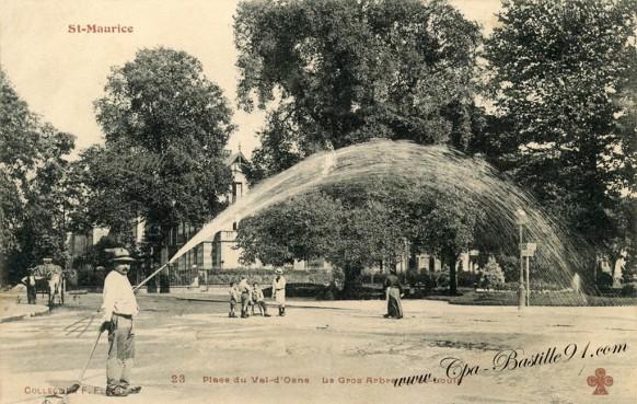 St-Maurice - Place du Val-d'Osne - Le Gros Arbre de st-Louis