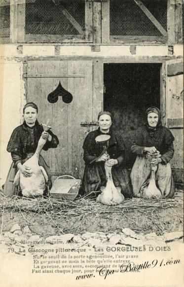 La Gascogne Pittoresque - Les Gorgeuses d'Oies