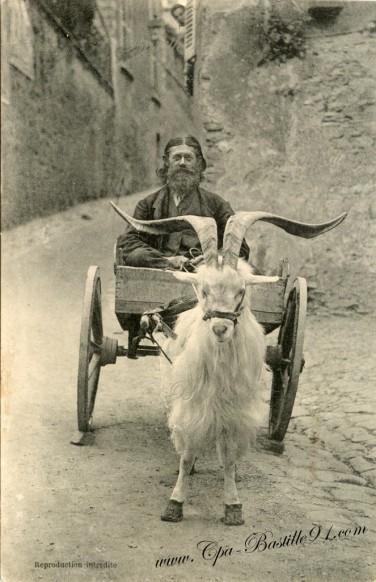 Carte postale de Dinan - Un mendiant sur une charrette tirée par une chèvre