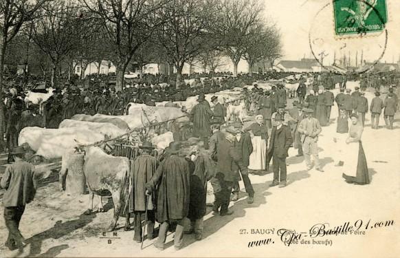 Baugy-Le champ de Foire-Cote boeufs