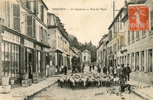 Gonesse - Un Troupeau de Moutons - Rue de Paris .