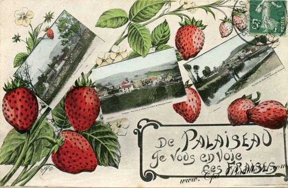 De Palaiseau-je vous envoie ces Fraises - Cliquez sur la carte pour l'agrandir et en voir tous les détails