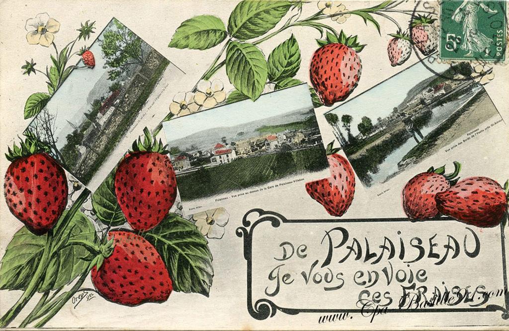 fraises cartes postales anciennes. Black Bedroom Furniture Sets. Home Design Ideas