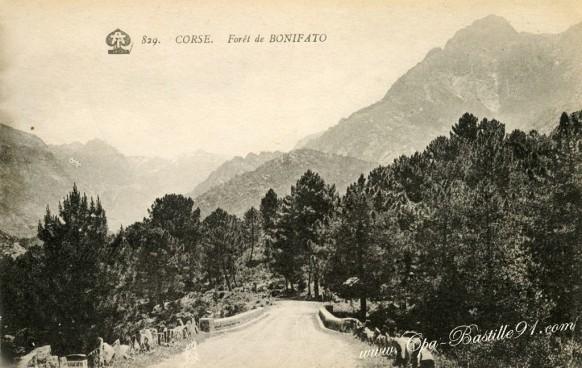 Corse-Foret-de-Bonifato.