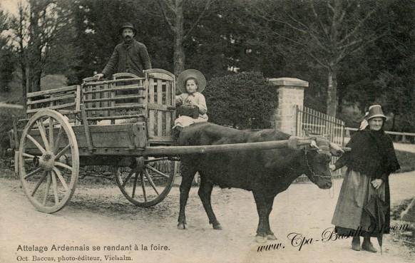 Attelage-Ardennais-se-rendant-à-la-Foire