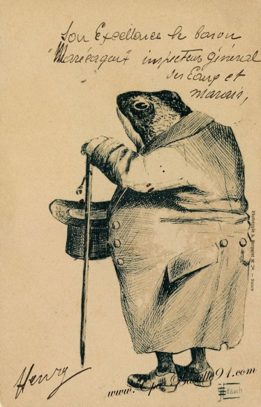 carte postale ancienne-Grenouille à comportement humains-caricatures par Staub