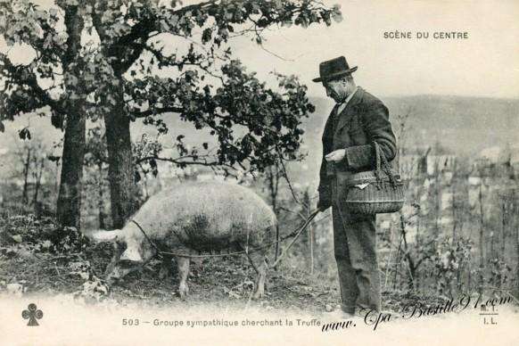 Groupe-sympathique-cherchant-la-truffe