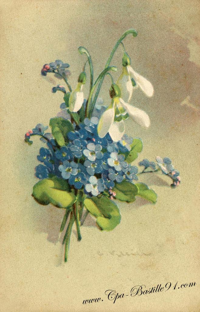 Fleurs cartes postales anciennes page 4 for Fleurs vente