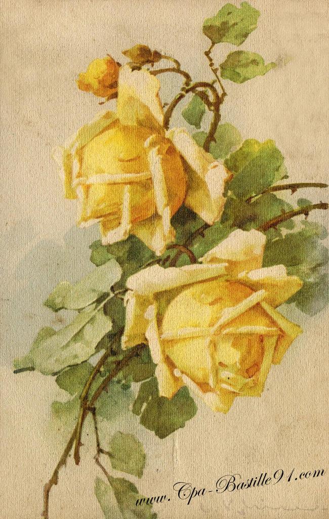 Aquarelle cartes postales anciennes for Fleurs vente