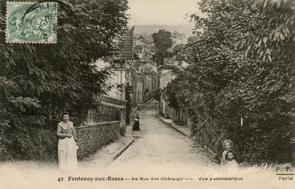 Fontenay-aux-Roses-La-rue-des-chataigniers-vue-panoramique