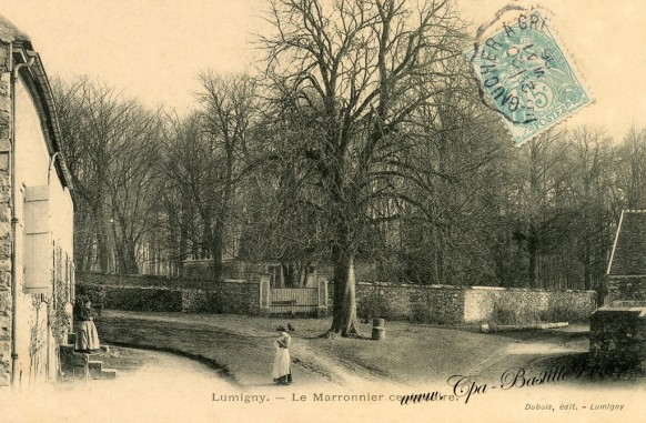 Lumigny-Le-marronnier-centenaire