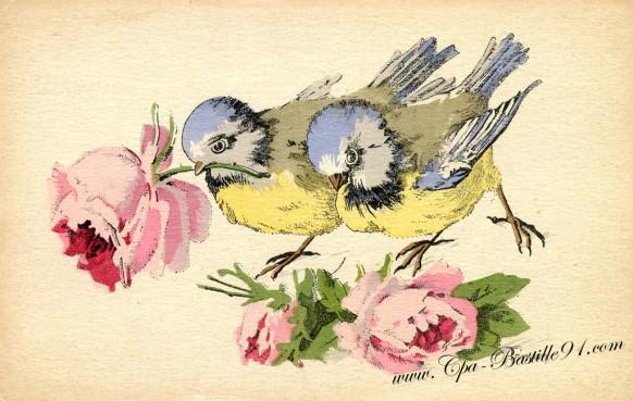 Carte Postale Ancienne – Deux oiseaux de l'illustrateur Trimm