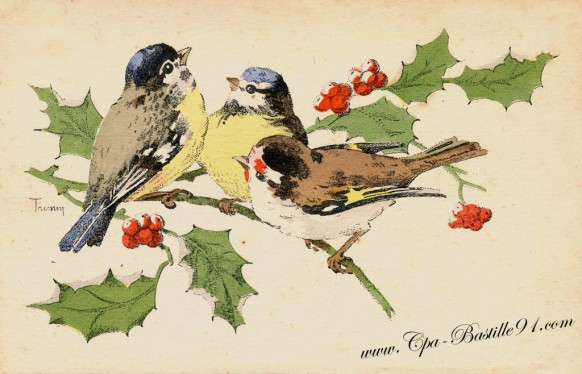 Carte postale ancienne –  Les mésanges de l'illustrateur Trimm