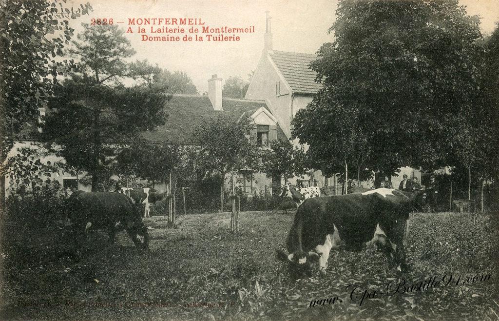 vaches | Cartes Postales Anciennes