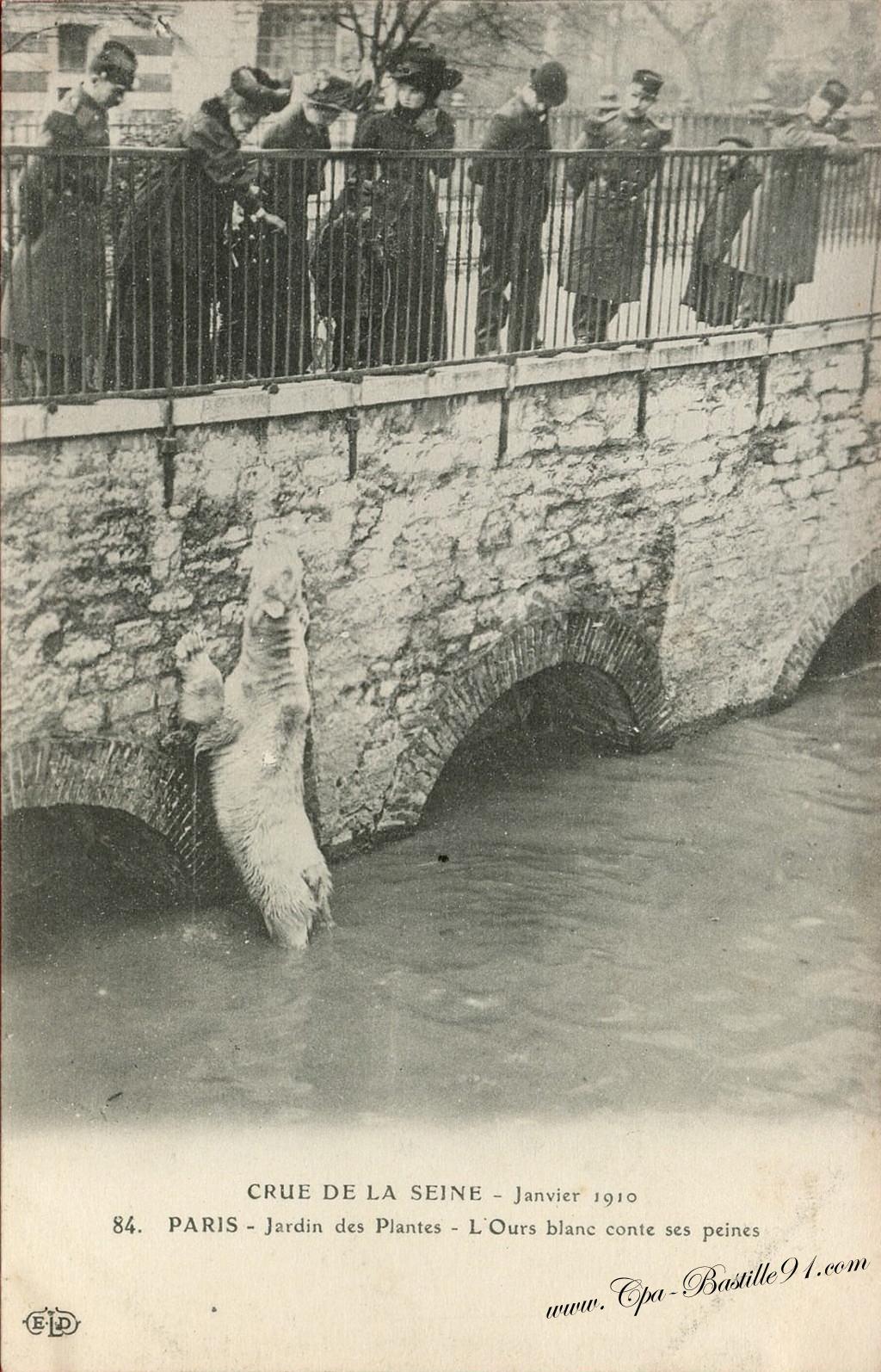 Crue de la seine janvier 1910 paris le jardin des for Le jardin hivernal du off paris seine
