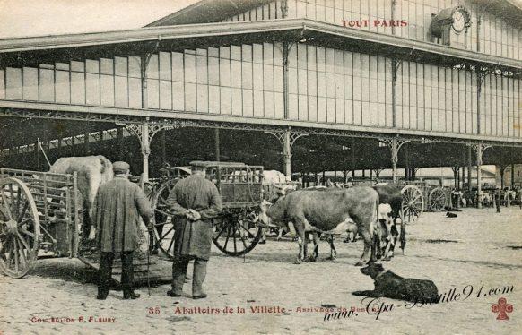CPA Tout paris- Abattoirs de la villette - Arrivage de Bestiaux