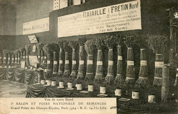 Carte Postale Ancienne - Salon et Foire Nationale de semences