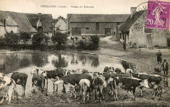 Carte Postale Ancienne de Coullons - La ferme du Beuvron