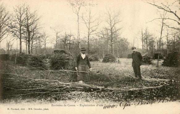 Carte Postale Ancienne - Environs de Cosne exploitation d'une Forêt