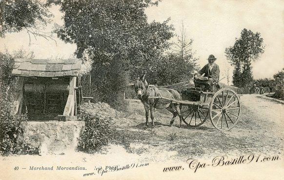 Marchand Morvandiau sur son attelage
