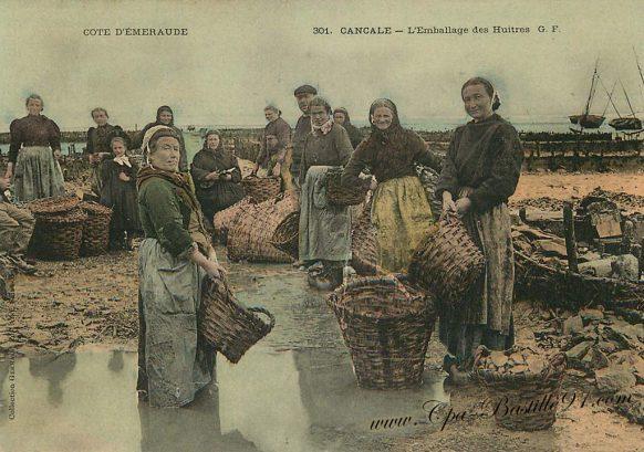 Carte Postale Ancienne - Cancale l'emballage des Huitres